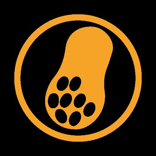 Peanut, Allergy Food, Allergen Icon Free Of Food Alergy Amber