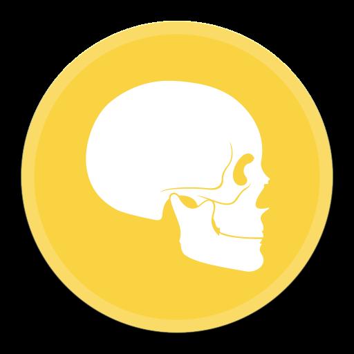 Anatomy Icon Free Of Button Ui