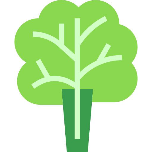 Lettuce Free Vector Icons Designed