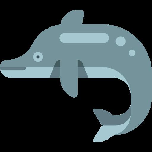 Animal, Dolphin, Animal Kingdom Icon