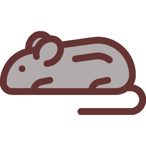Rodent, Mouse, Animals, Animal Kingdom, Wild Life Icon
