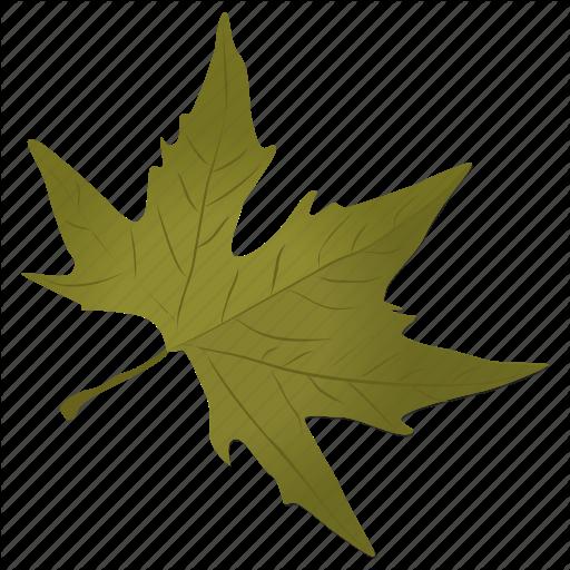 Silver Vector Leaf Huge Freebie! Download For Powerpoint