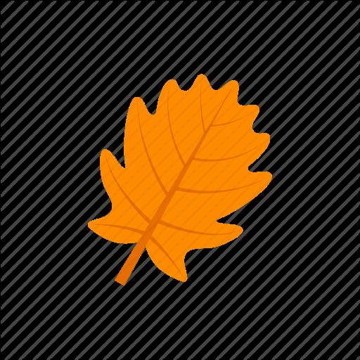 Autumn, Leaf, Orange, Pinnatifid Icon
