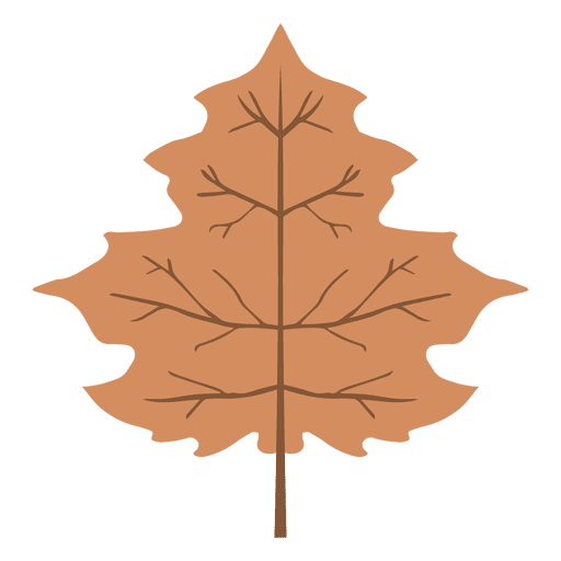 Isolated Brown Autumn Leaf