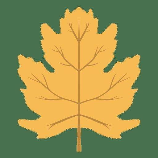 Isolated Yellow Autumn Leaf