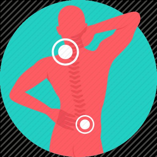 Back Bone, Backbone, Backpain, Cervical, Neck Pain, Nervous System