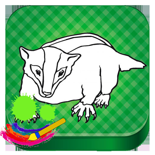Badger Animals Drawing Game For Kids