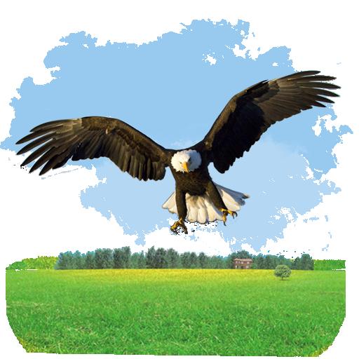 Animals Eagle Icon My Seven Iconset Itzik Gur