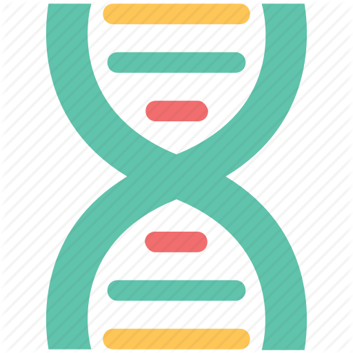 Dna, Dna Chain, Genetic Information, Molecule, Nucleic Acid Icon