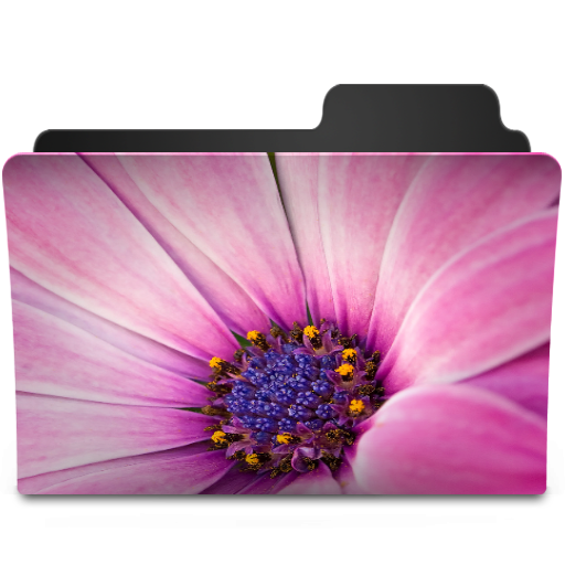 Pink Damask Folder Icon Mac Images