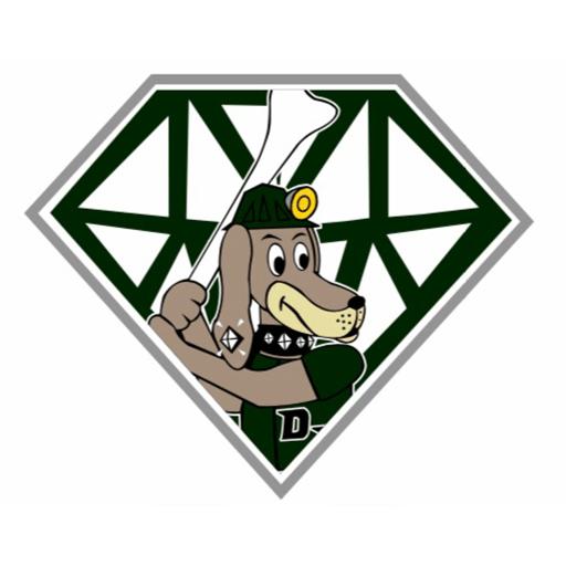 Diamond Dawgs Mohawk Valley Baseball