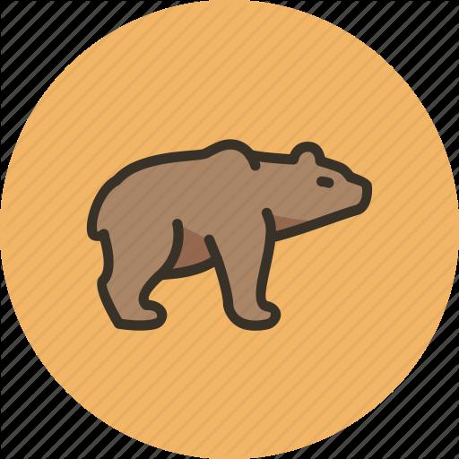 Animal, Bear, Brown, Grizzly, Predator, White Icon