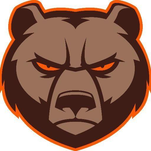 Angry Brown Bear Head
