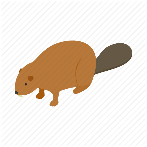 Animal, Beaver, Canada, Canadian, Fur, Isometric, Wildlife Icon