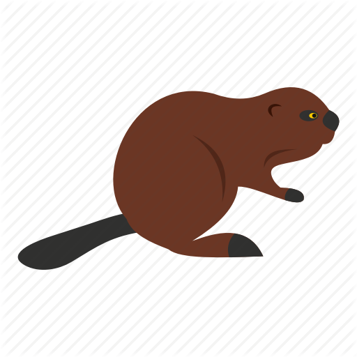 Animal, Beaver, Canada, Canadian, Fur, Nature, Wildlife Icon