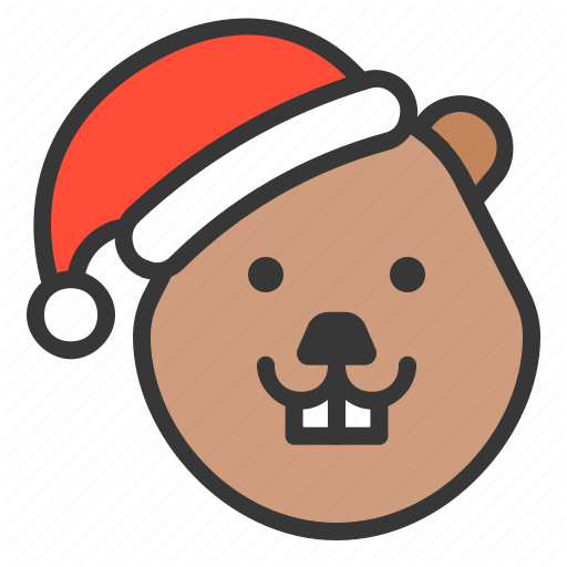 Animal, Beaver, Christmas Hat, Wild, Xmas Icon
