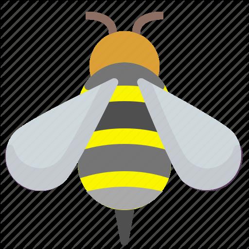 Bee, Bio, Honey, Insect Icon