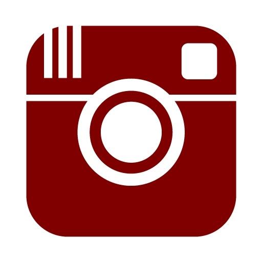 Instagram Media Icon Free