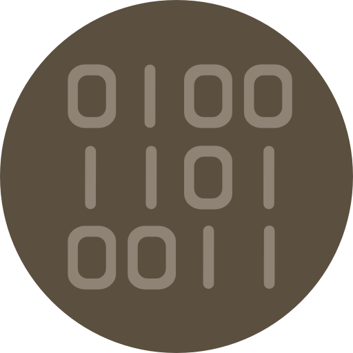 Binary Code Icon