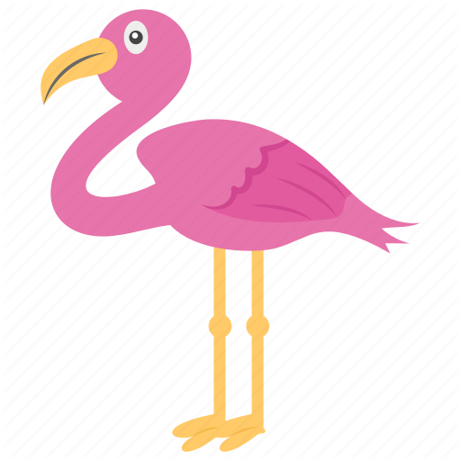 African Bird, Animal, Bird, Flamingo, Wading Bird Icon