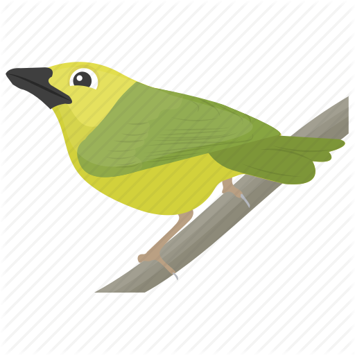 Bird, Feather Creature, Macaw, Parrot, Pet Bird Icon