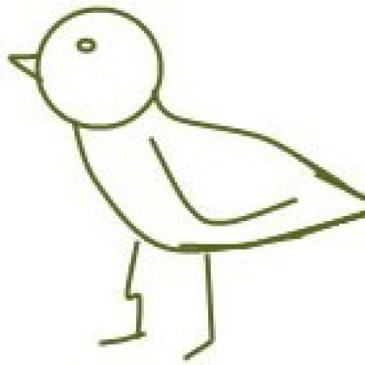 Cropped Cropped Bird Icon Cropped Jenae Cohn