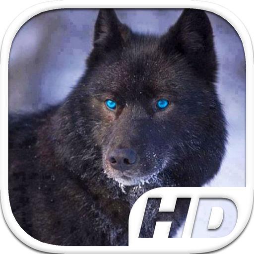 Black Wolf Simulator Hd Animal Life