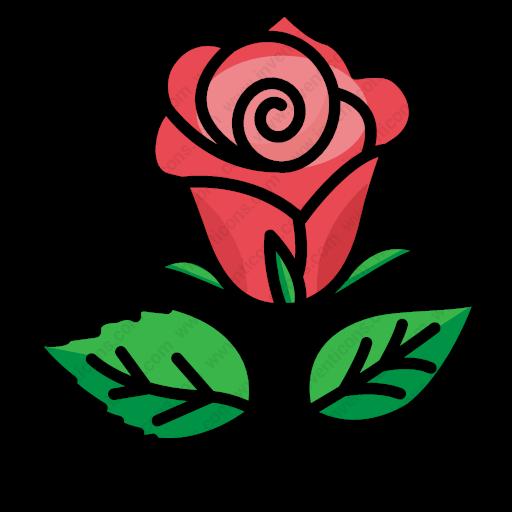 Download Flower,rose,valentine,gift,love,garden,nature,bloom Icon