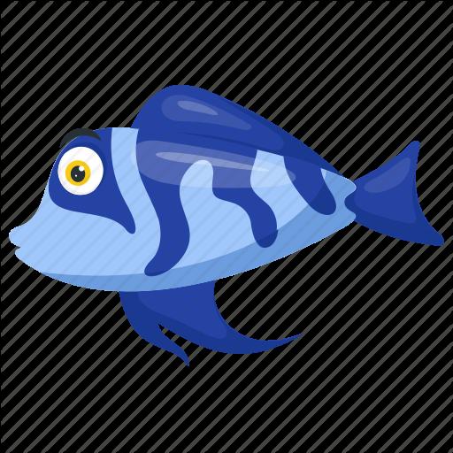 Blue Cichlid Fish, Blue Dragon, Electric Blue Hap, Sea Animal