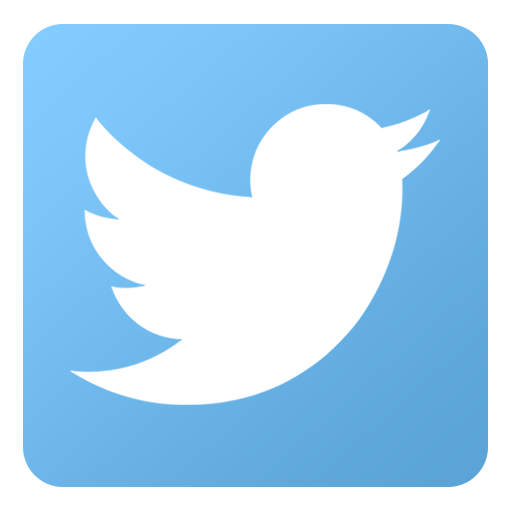 Twitter Icon Iconshow
