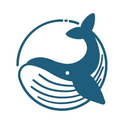 Blue Whale Foundation