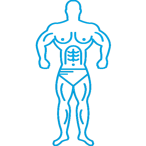 Ems Bodybuilding Training Electric Muscle Trainer