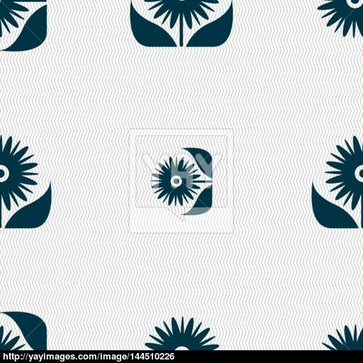 Bouquet Of Flowers With Petals Icon Sign Seamless Abstract