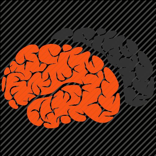 Brain, Brains, Brainstorming, Intellect, Memory, Mind, Neuro Icon
