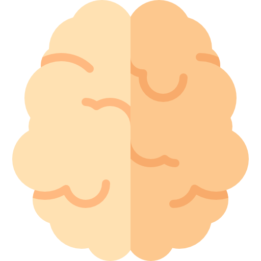Brain, Brain Anterior, Body Organ Icon