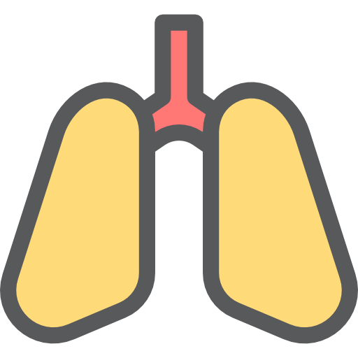 Medical, Lung, Healthcare And Medical, Organ, Lungs, Breath