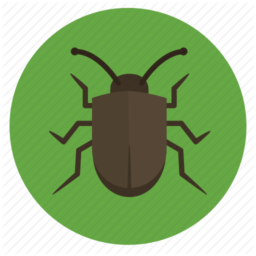 Beetle, Bug, Crawler, Insect, Insects, Nature, Stink Bug Icon