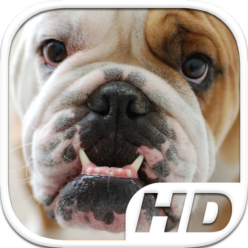 Bulldog Simulator Hd Animal Life