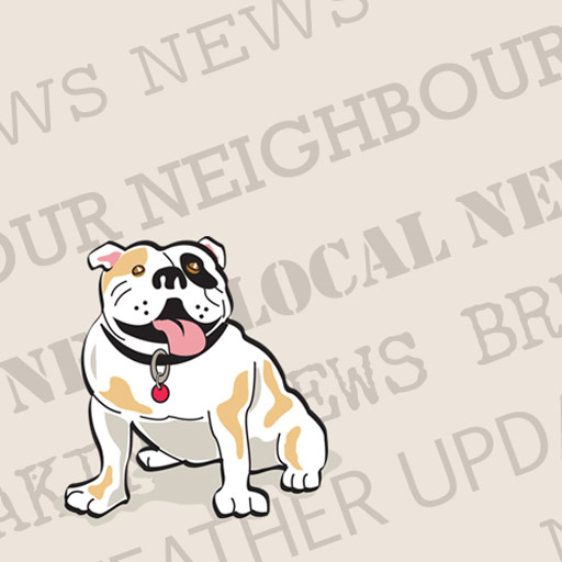 The South Bayview Bulldog A Unique Local News Service