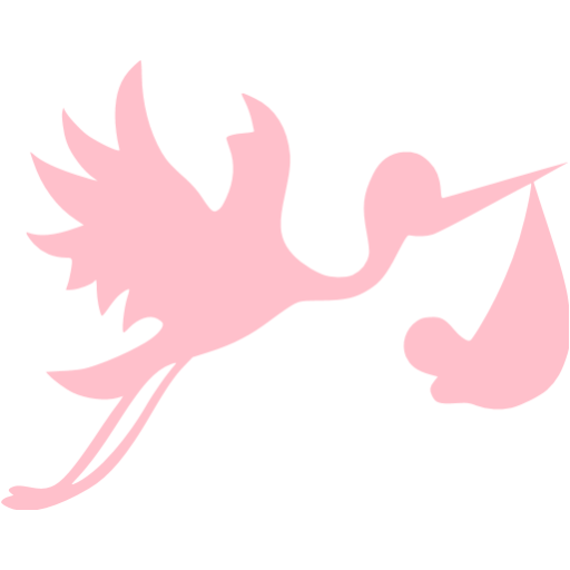 Pink Flying Stork With Bundle Icon