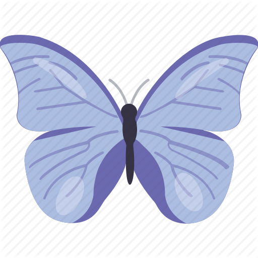 Bird, Blue Butterfly, Butterfly, Insect, Pretty Butterfly Icon