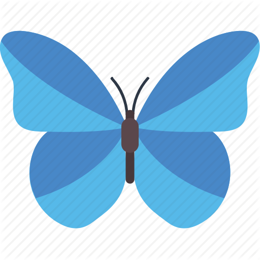 Blue Morpho Butterfly, Butterfly, Butterfly Specie, Butterfly