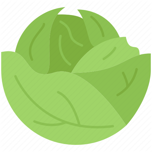 Cabbage, Cooking, Food, Shop, Supermarket, Vegetable Icon