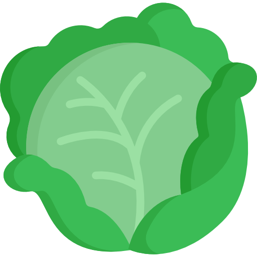 Cabbage Free Vector Icons Designed