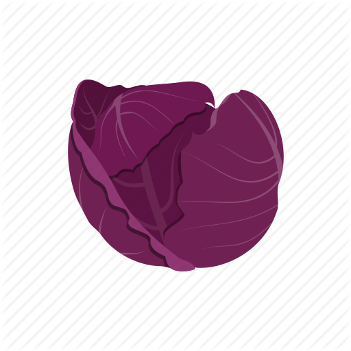 Red Cabbage, Vegetable Icon