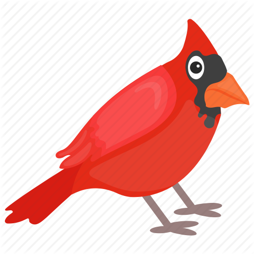 Bird, Cardinal Bird, Feather Creature, Northern Cardinal, Red Bird