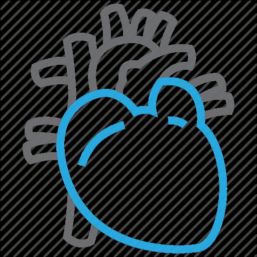 Cardiology, Cardiovascular, Heart, Organ Icon