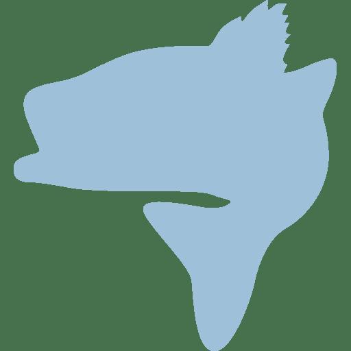 Favicon Striped Bass Magic