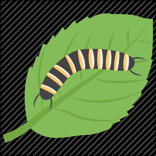 Animal, Caterpillar, Insect, Larva, Plant Caterpillar Icon