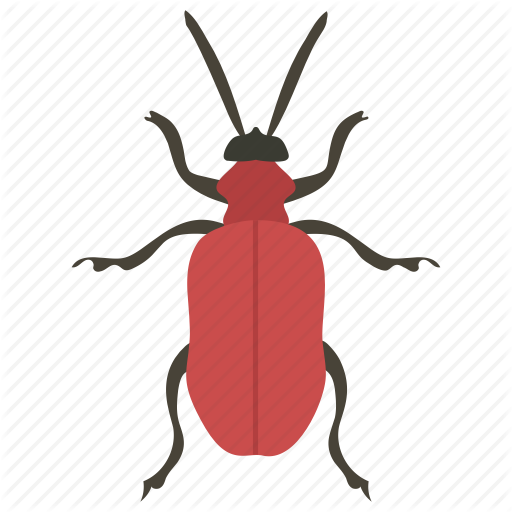 Beetle, Insect, Pest, Water Bug, Water Insect Icon